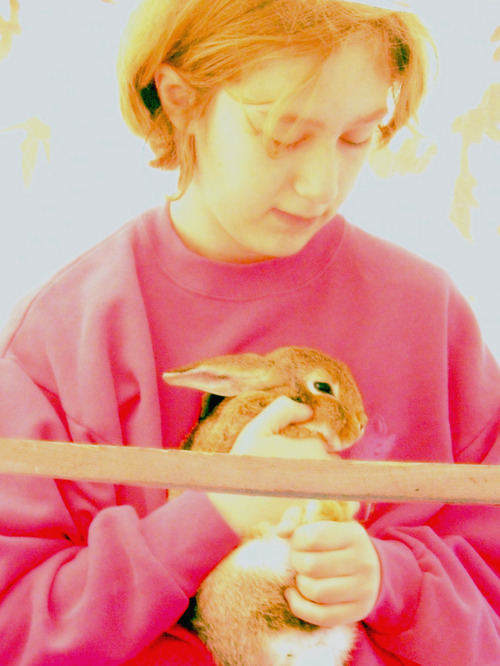 05_bunnies